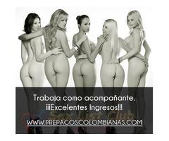 EMPLEO PREPAGOS BOGOTA prepagoscolombianascom